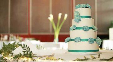 Milwaukee Wedding Cake Teal