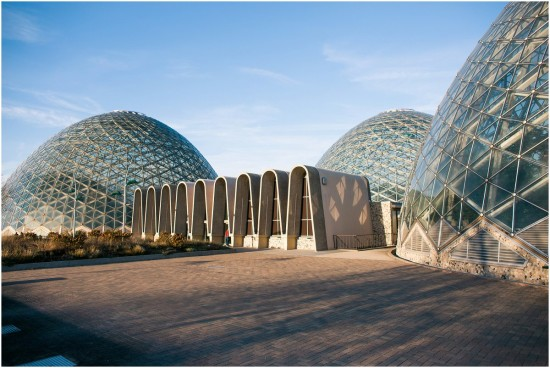 Milwaukee Domes. Boutique Photographer (5)